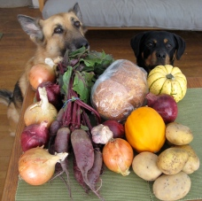 Cassius and Roxy pose with the final CSA share from Sol to Seed Farm 2012